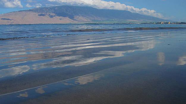Marilyn Wilson - Reflecting on Maui