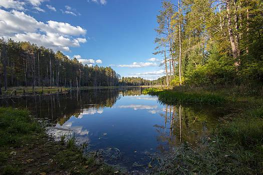 Reflecting Pond by Laurel Butkins