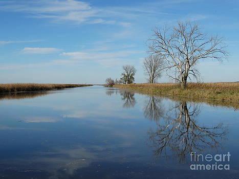 Reflecting pool by Jon Glynn