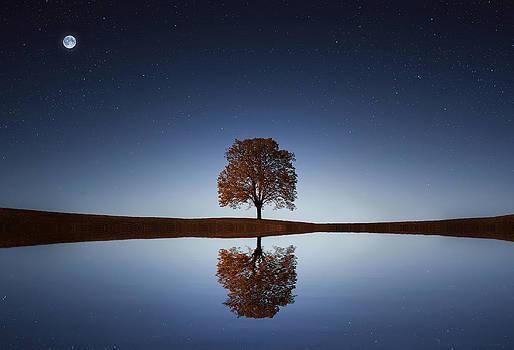 Reflection by Bess Hamiti