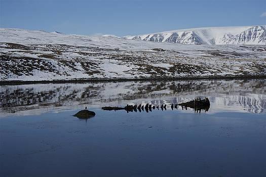 Reflection. by Erlendur Gudmundsson