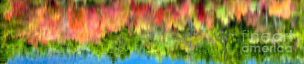 Reflection of Fall Color by Carol Barrington