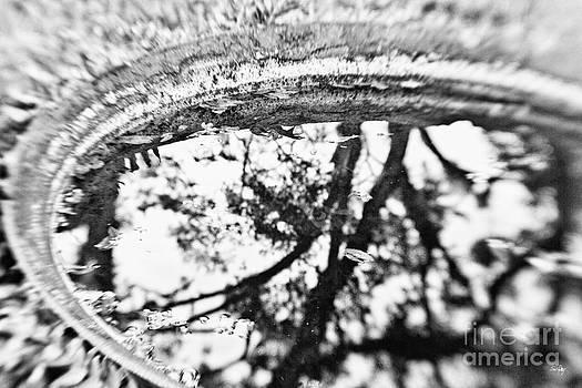 Scott Pellegrin - Reflection of Time
