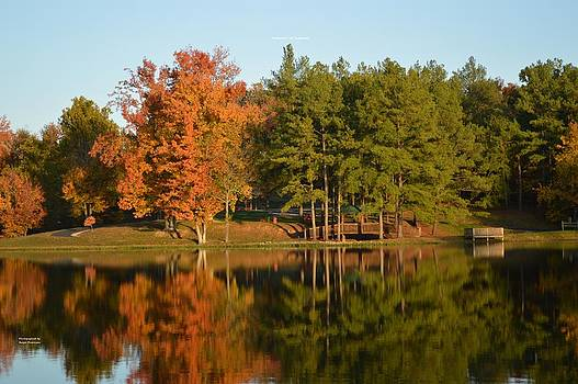Reflection of Vastwood by Ralph Dickerson