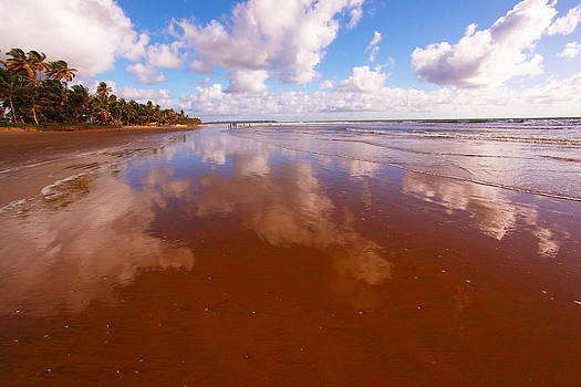 Reflection on Mayaro Beach by Dexter Browne