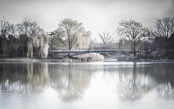Julie Palencia - Reflection Over Lake Winter Scene