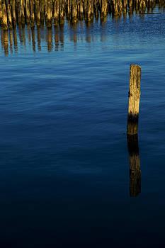 Karol Livote - Reflections At Dusk