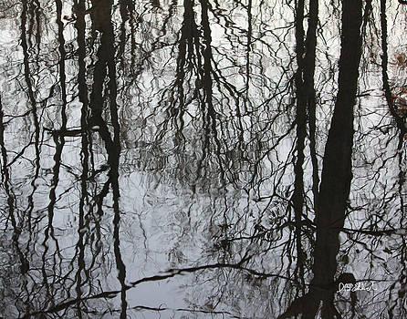 Reflections by IB Ehrlich
