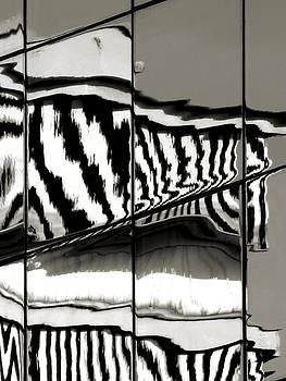 Reflections in Black and White by Jennifer Wheatley Wolf