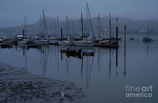 Conwy Harbour by Adrian Hillyard