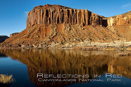 Reflections in Red by Jim Lucas