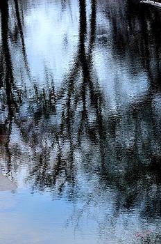 Reflections of trees by Karen Kersey