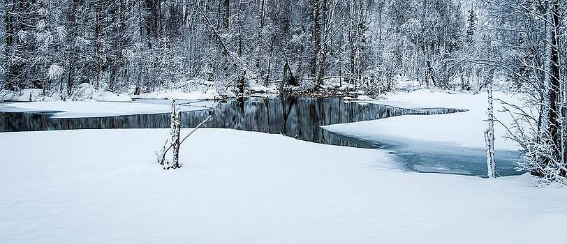 Reflections of Winter by Stephen Smith