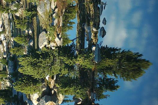 Reflections of Yellowstone by Larry Moloney