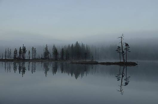 Reflections by Peder Lundkvist