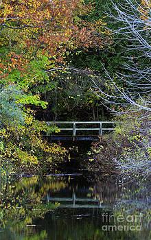 Reflective Fall by Kathy DesJardins
