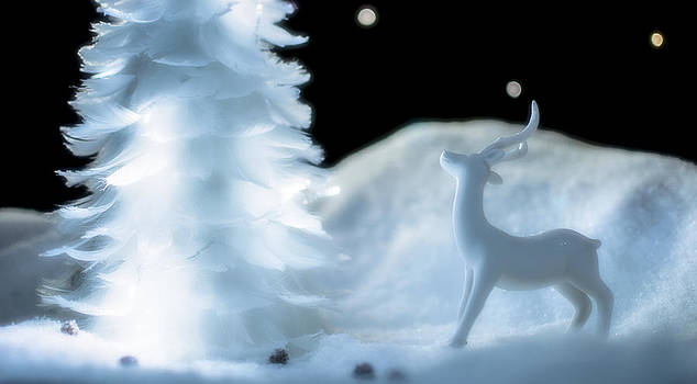 Reindeer White by Kelly Anderson