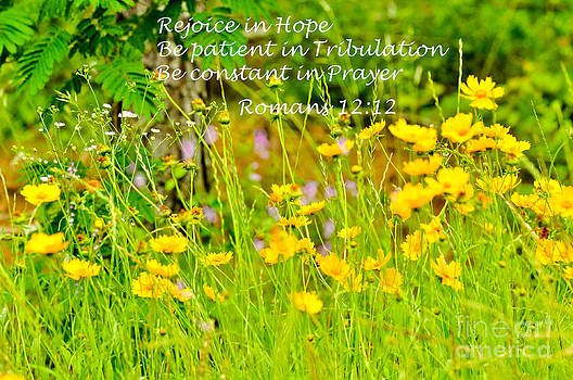 Rejoice in Hope by Reflections by Brynne Photography