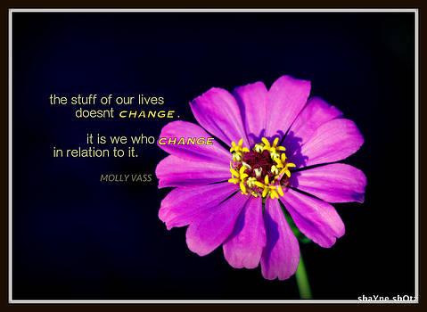 Relation to Change by Shayne Johnson Fleming