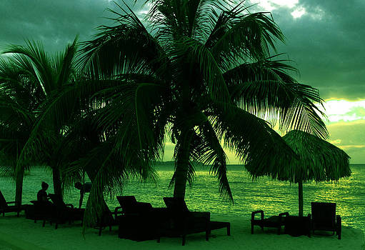 Relaxing in Jamaica by Ann Iuen