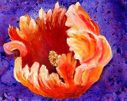 Rembrant Tulip by Janis  Tafoya