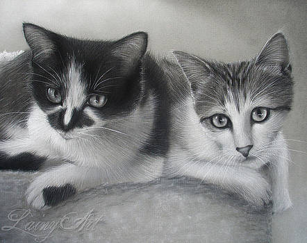 Rescue Kittens by Alaina Ferguson