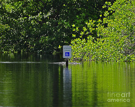 Reserved For Reptiles by Al Powell Photography USA