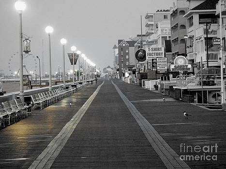 Resting Boardwalk by Chad Thompson