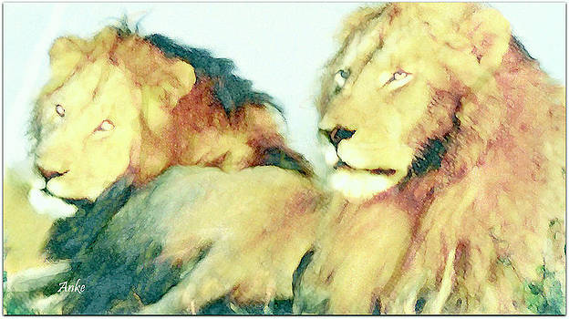 Resting Lions by Anke Wheeler