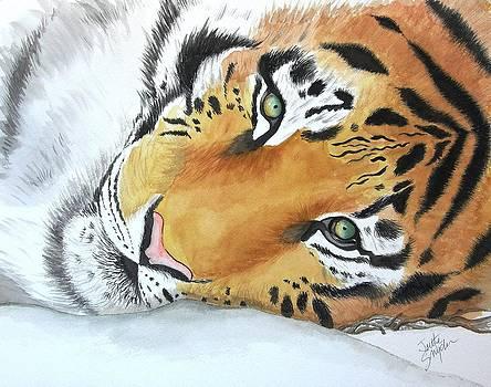 Resting Tiger by Joette Snyder