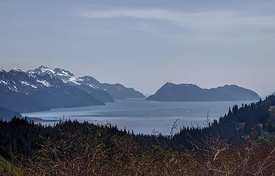 Resurrection Bay by Daniel Sands