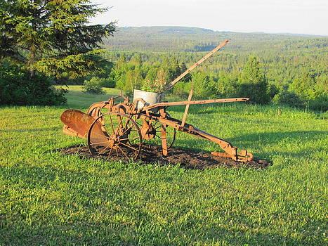 Retired Plow by Sandra Martin