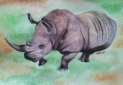 Rhino Dance by Carol De Bruyn