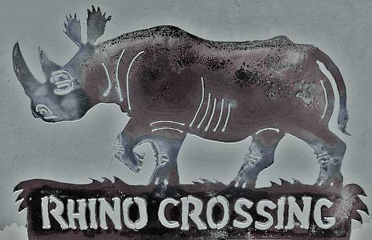 Rhino XIV by Larry Campbell