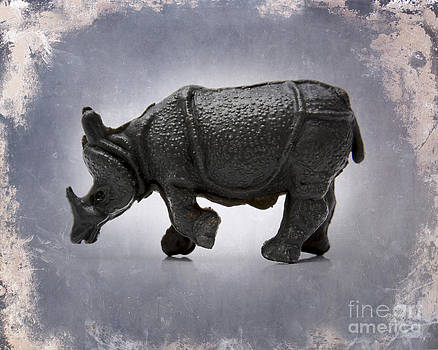 BERNARD JAUBERT - Rhinoceros