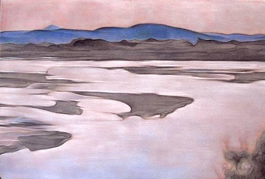Ria Formosa by Mario Prencipe