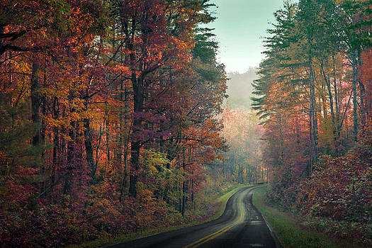 Ribbon road by William Schmid