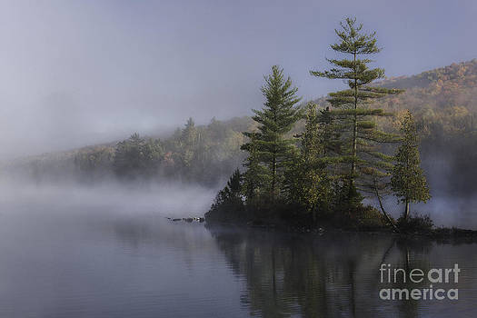 Thomas Schoeller - Rickers Pond - Misty Morning