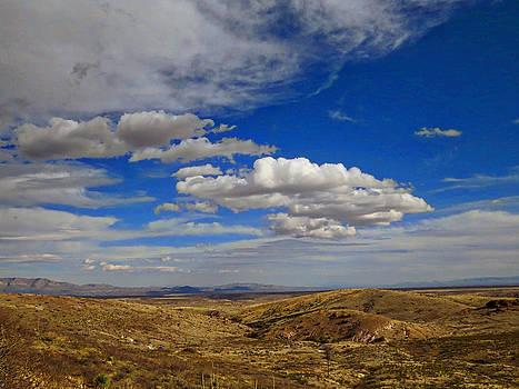 Feva  Fotos - Rio Grande Valley Afternoon