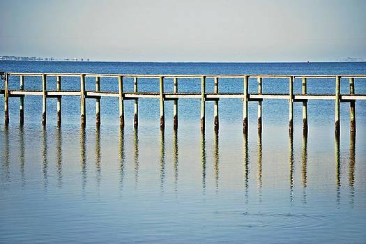 Judy Hall-Folde - Rippled Reflections