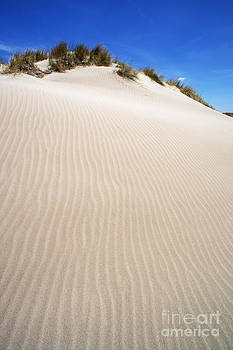 Ripples in sand dune by Sami Sarkis