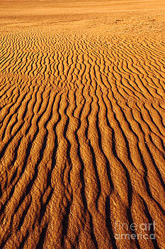 James Brunker - Ripple Patterns in the Sand 3