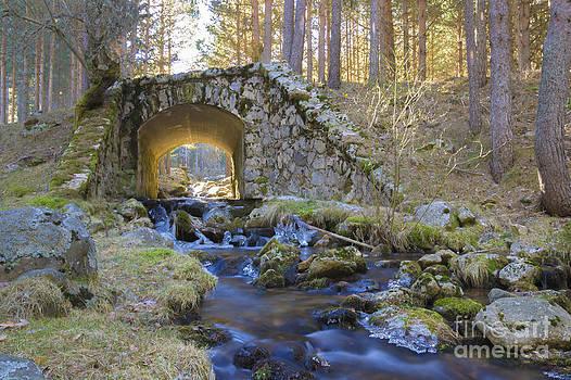 River and bridge by Stefano Piccini