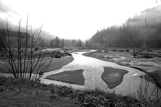 River in the rain by Gordon  Grimwade