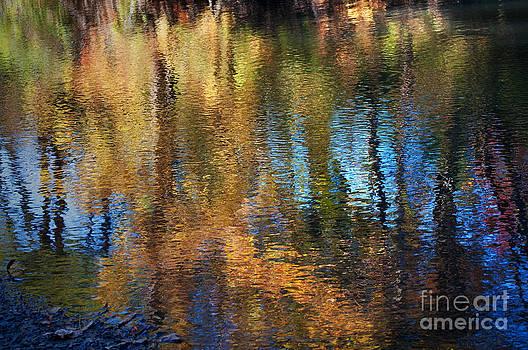 Gwyn Newcombe - River Mirage