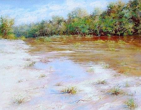 River Nature Landscape by Nancy Stutes