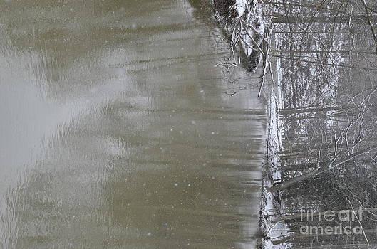 Randy J Heath - River reflections