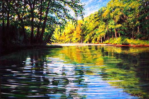 River Reflections by Wayne Fair