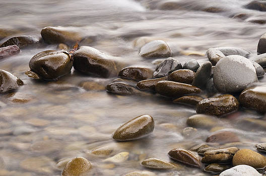 River Rock by Chad Davis