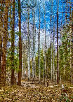 Omaste Witkowski - River Run Trail at Arrowleaf